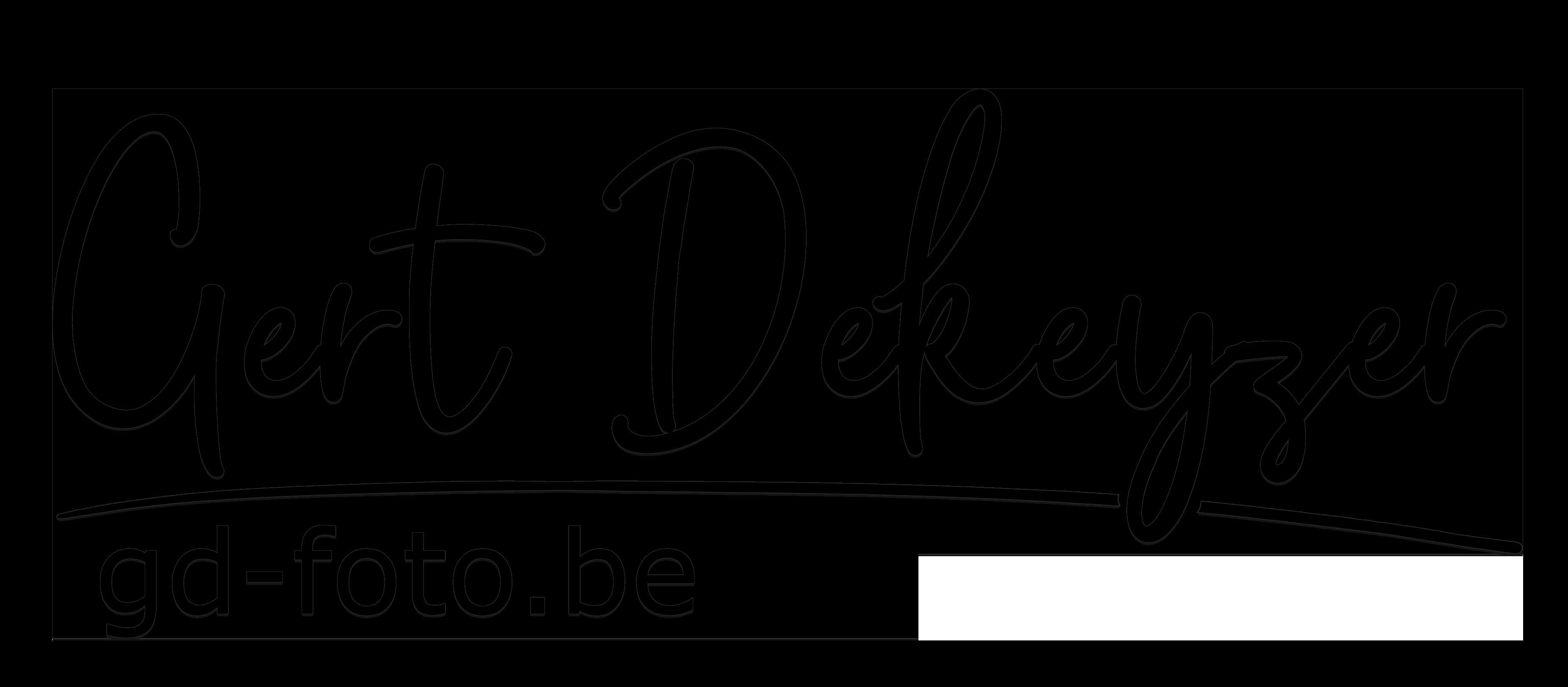 Logo lijn Gert zwart